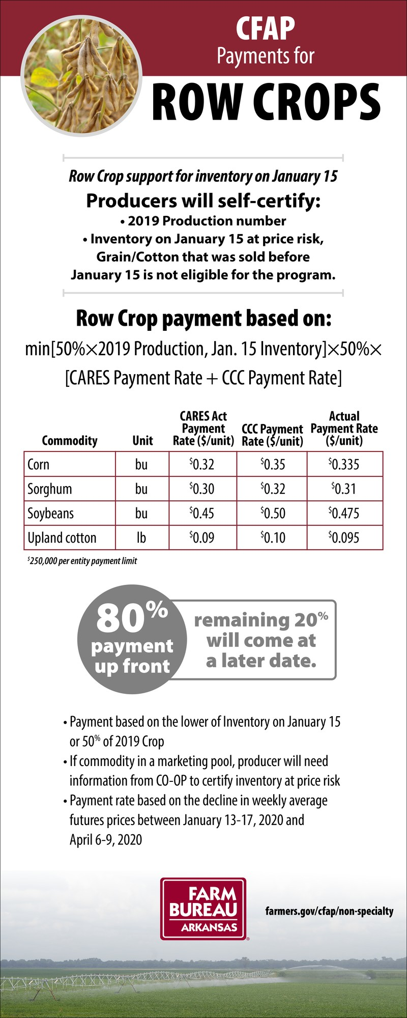 CFAP payments for row crops image