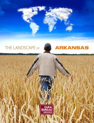 Landscape of Arkansas book image and link