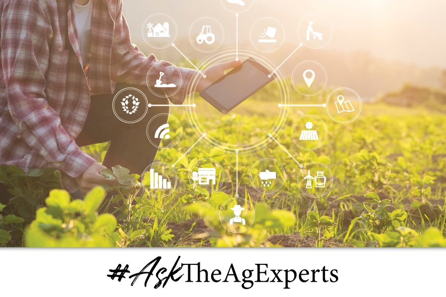#AskTheAgExperts: Video Interviews with Farmers & Industry Experts