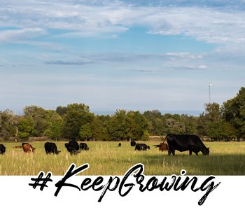 #KeepGrowing: More Reports from the Field