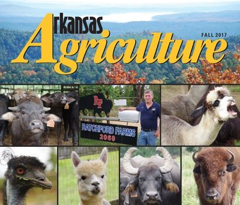 Arkansas Agriculture Magazine for Fall 2017