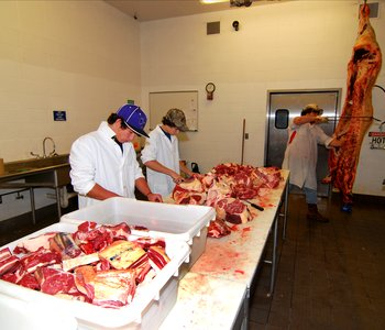 VIDEO: State Meat Inspection