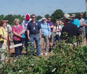 VIDEO: Horticulture Field Day Highlights