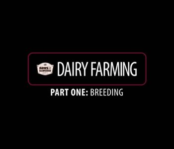 Rows & Ranches Returns: Dairy
