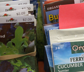 VIDEO: Checking Out a Seed Library