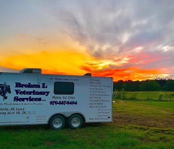 VIDEO: A Day in the Life of a Mobile Veterinarian