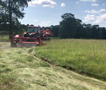 VIDEO: An Update from Fowler-Bearden Farms in Hot Spring County