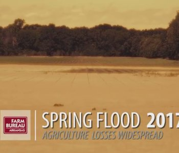VIDEO: Flooding Hits Arkansas Agriculture
