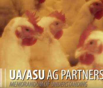 Poultry Degree Partnership